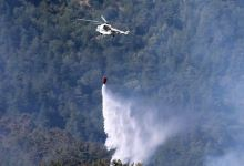 74 forest fires across Turkey under control: Official 2
