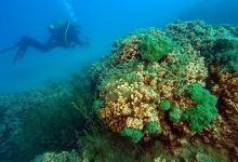Scientists study underwater treasures of Turkey's Lake Salda 11