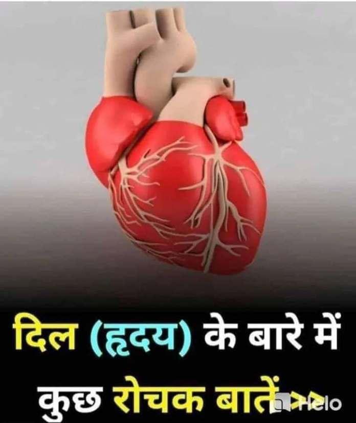 interesting fact about human heart