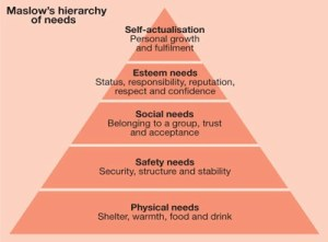 Abraham Maslow's Hierarchy Theory