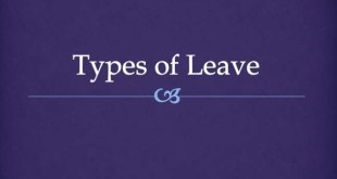 What Are The Different Types Of Employment Leaves?