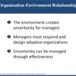 Forces Affecting Organization-Environment relationships | Principles Of Management