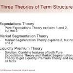 Theories of term structure of interest rates