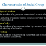 Characteristics of Social Groups   Sociology