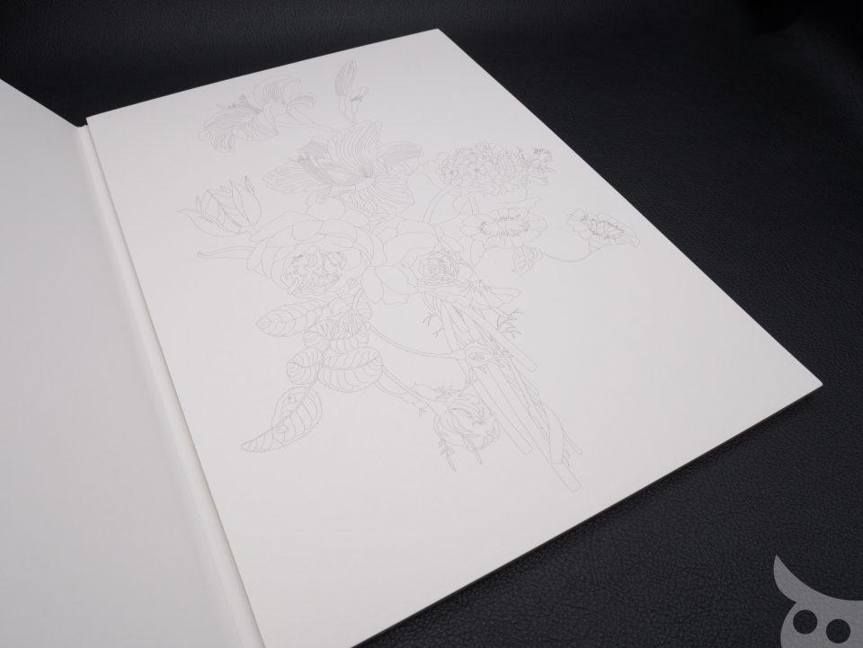 pepin-colouring-book-26