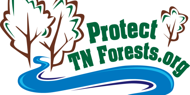 GOVERNOR PROCLAIMS MARCH 5 AS ARBOR DAY IN TENNESSEE