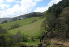 Peak district - countryside