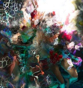 christy lee rogers HYRBRIDS botanic burst