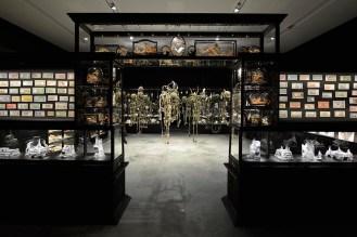 simon mordant exhibits australia pavilion