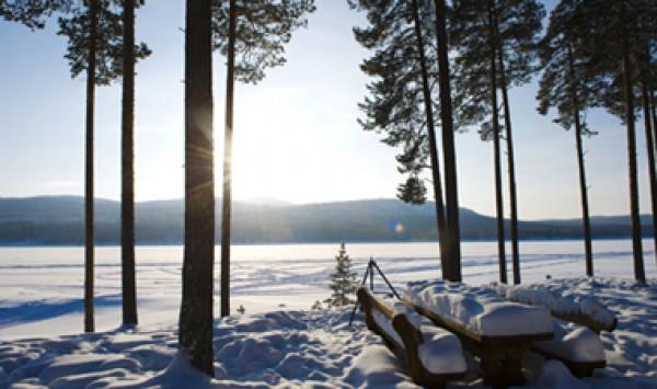 Fjallripan Lodge Lofsdalen Zweden  Winter op zn zweeds