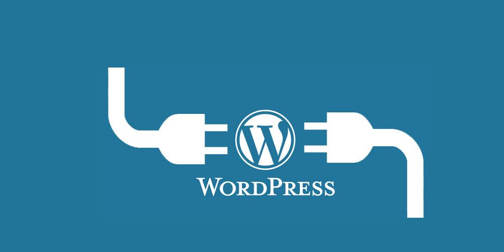 Wordpress Özel Ders Ankara