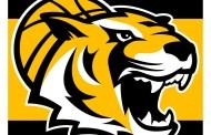 BARMER ProA – Philipp Neumann verstärkt die Tigers Tübingen