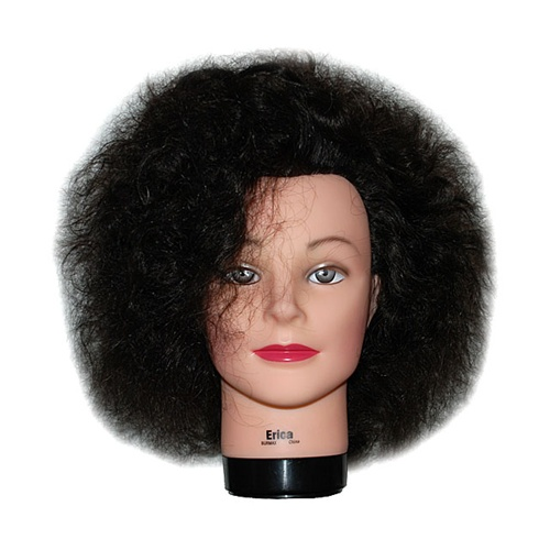 16 Cosmetology Mannequin Head Erica Naturally Curly