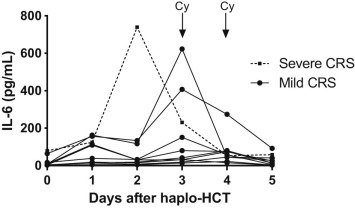Severe Cytokine-Release Syndrome after T Cell–Replete