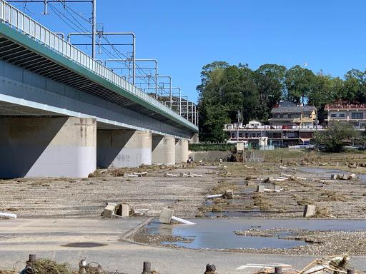 丸子橋河川敷⑤