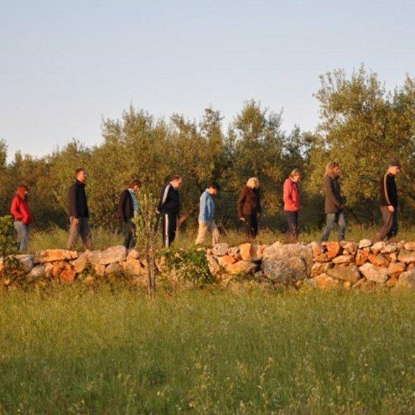 Gruppe wandert am Franziskusweg Krk