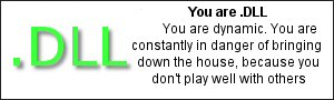You are .dll You are dynamic.  You are constantly in danger of bringing down the house, because you don