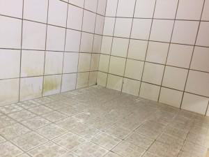 Nijmegen douches reinigen1