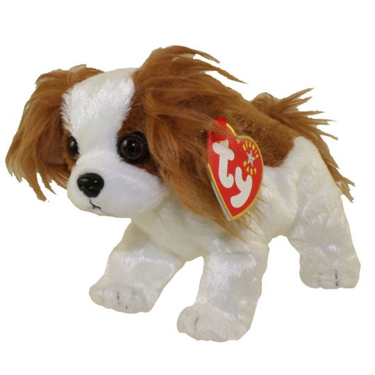 ty beanie baby regal the king charles spaniel dog 6 inch bbtoystore com
