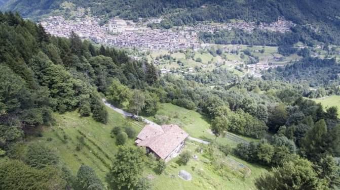 Seconda sede dell'azienda Terre Solive per la raccolta di asparagi di monte e radicchio dell'orso