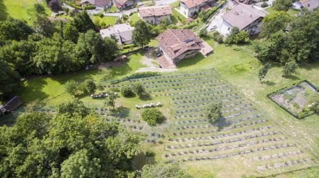 vista panoramica azienda agricola Nabacino Giovanni a Bagolino