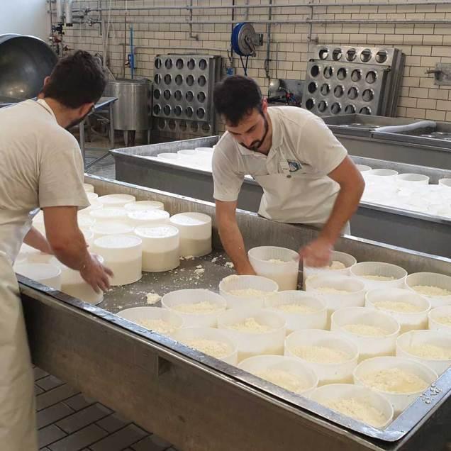 Lavorazione del latte per formaggelle baby di montagna