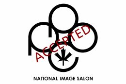 PPOC National Image Salon