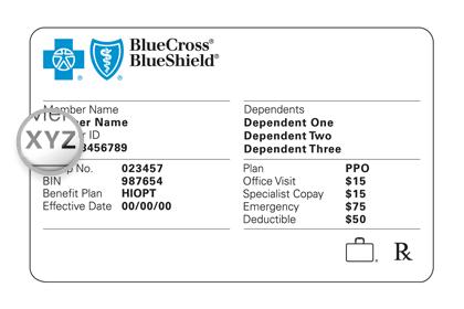 member services blue cross