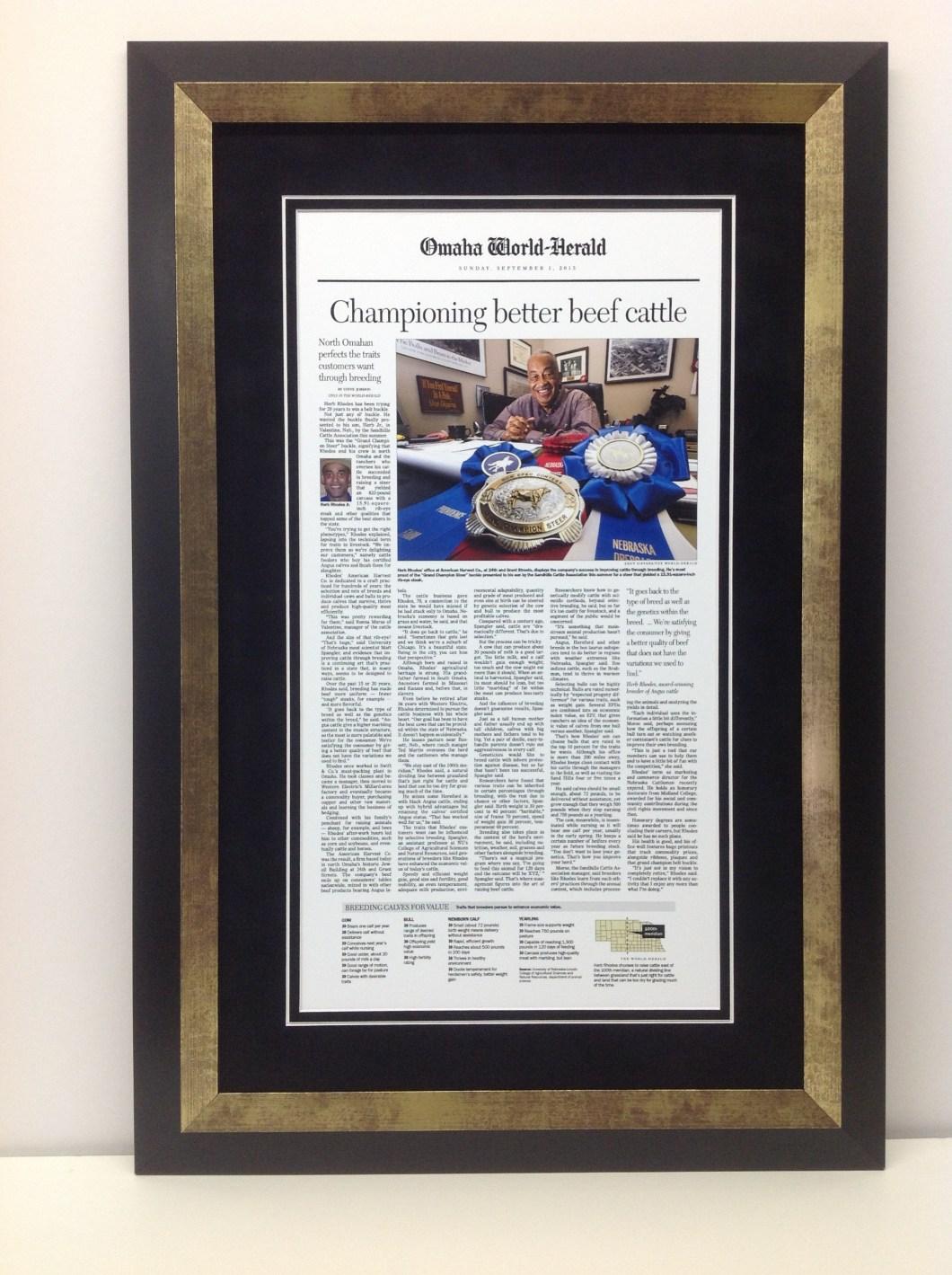 How Do I Frame A Newspaper Article | Siteframes.co