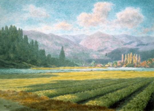 holliday-celery fields- smaller