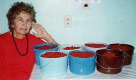 buckets-of-bulberries