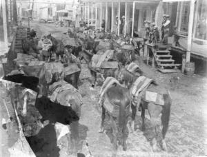 Pack train in Barkerville - City of Vancouver Archives