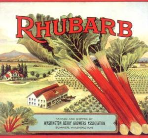 Ad for rhubarb from a now defunct rhubarb company in Washington State