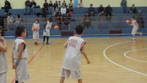 BCJ 2008 (36)