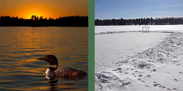 big cedar lake seasons