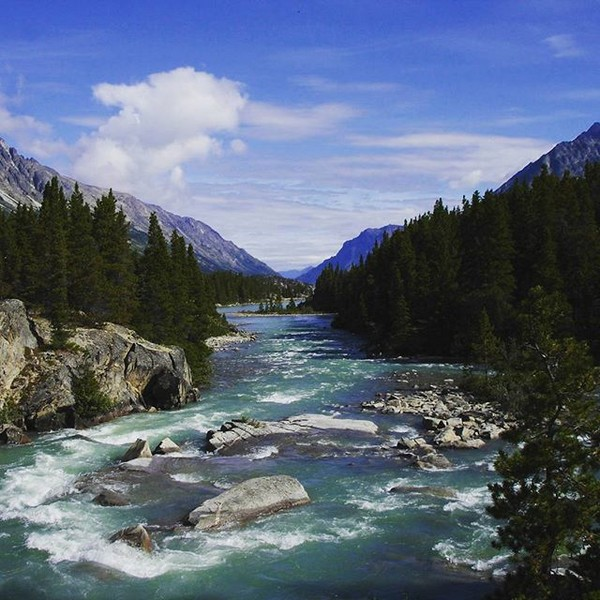 Las aguas de la montaña fluyendo hacia Bennet Lake, donde nace el río Yukón.