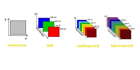 Tipos de imágenes: monocromo, RGB, multiespectrales, hiperespectrales