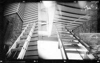 Antognoli-The-Ladder.jpg