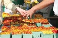 farmersmarket-tomatoes