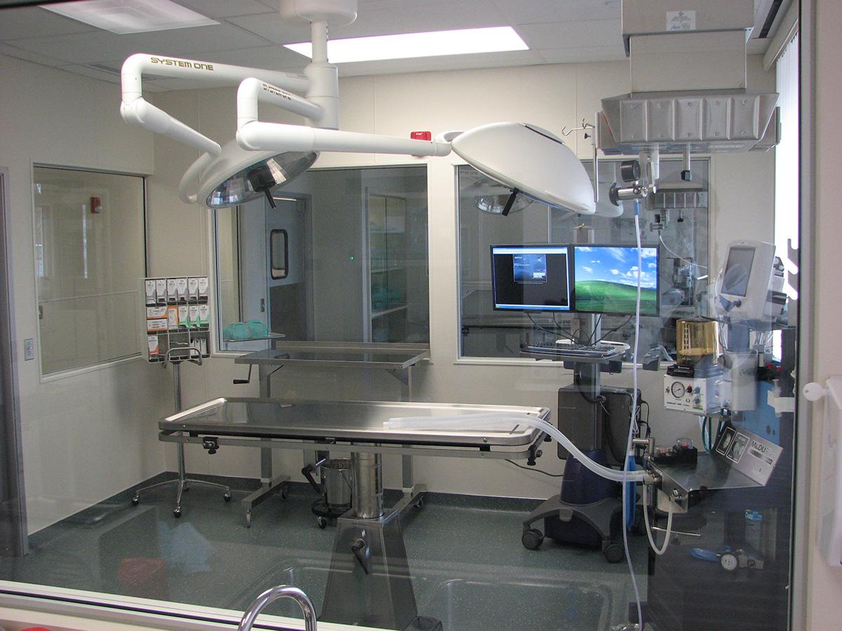 Veterinary Surgery Room