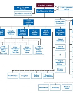 Second curve the organizational matrix at health first also organizing for combining plans and rh bdcadvisors