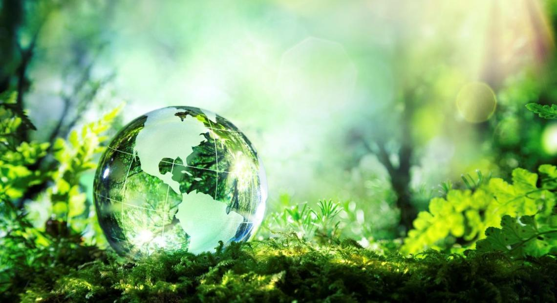 Businesses across the world are looking at ways they can reduce the level of waste they produce, whether that's switching to eco-friendly packaging or incorporating greener manufacturing methods.