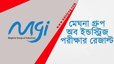 Meghna Group of Industries Exam Result