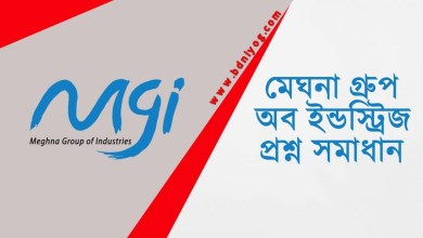 Meghna Group of Industries Question Solution