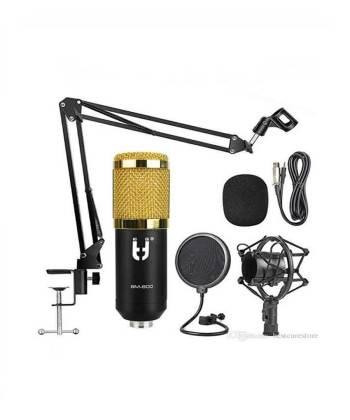 bm 800 mic price