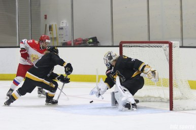 Boston Pride goalie Brittany Ott (29) looks to keep the puck out of the net