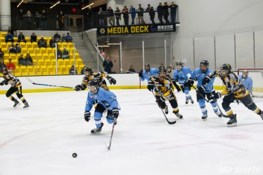 Buffalo Beauts forward Kristin Lewicki (27) pushes the puck out of the Beauts' defensive end