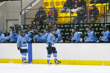 Buffalo Beauts defender Sarah Edney (3) celebrates her goal, the Beauts' second goal of the game