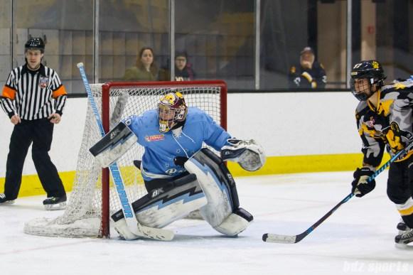 Buffalo Beauts goalie Amanda Leveille (28)