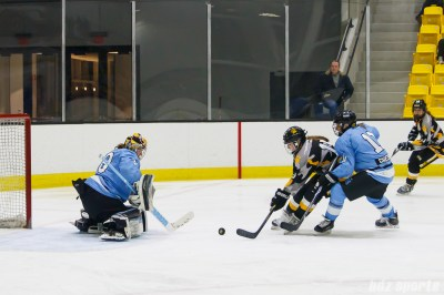 Boston Pride forward Emily Field (15) attempts to get the puck around Buffalo Beauts goalie Amanda Leveille (28)